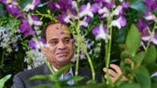 Flower named in honor of Egyptian President Sisi
