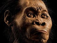 اكتشاف مذهل عن عيش جنس بشري من نوع آخر على الأرض
