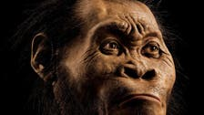 Remains of new human species found in S.African cave: scientists