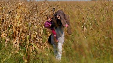 طريق الهجرة الجديد.. حقول الذرة بين صربيا وكرواتيا