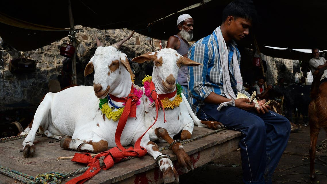 SH1186 - New Delhi, -, INDIA : An Indian livestock owner (R) sits next to decorated goats as he counts money at a market ahead of the upcoming Eid al-Adha festival in the old quarters of New Delhi on September 22, 2015. After decades of flocking to traditional livestock markets ahead of Eid, breeders in India are now heading online to haggle a good price for their prized animals. AFP PHOTO / SAJJAD HUSSAIN