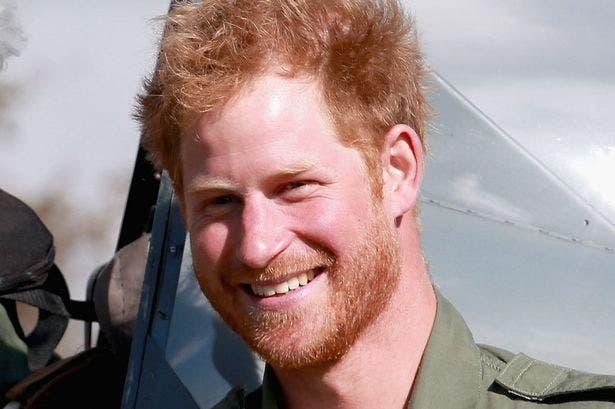 الأمير هاري