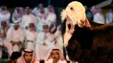 What's all the beef about Bahrain's subsidy cuts?