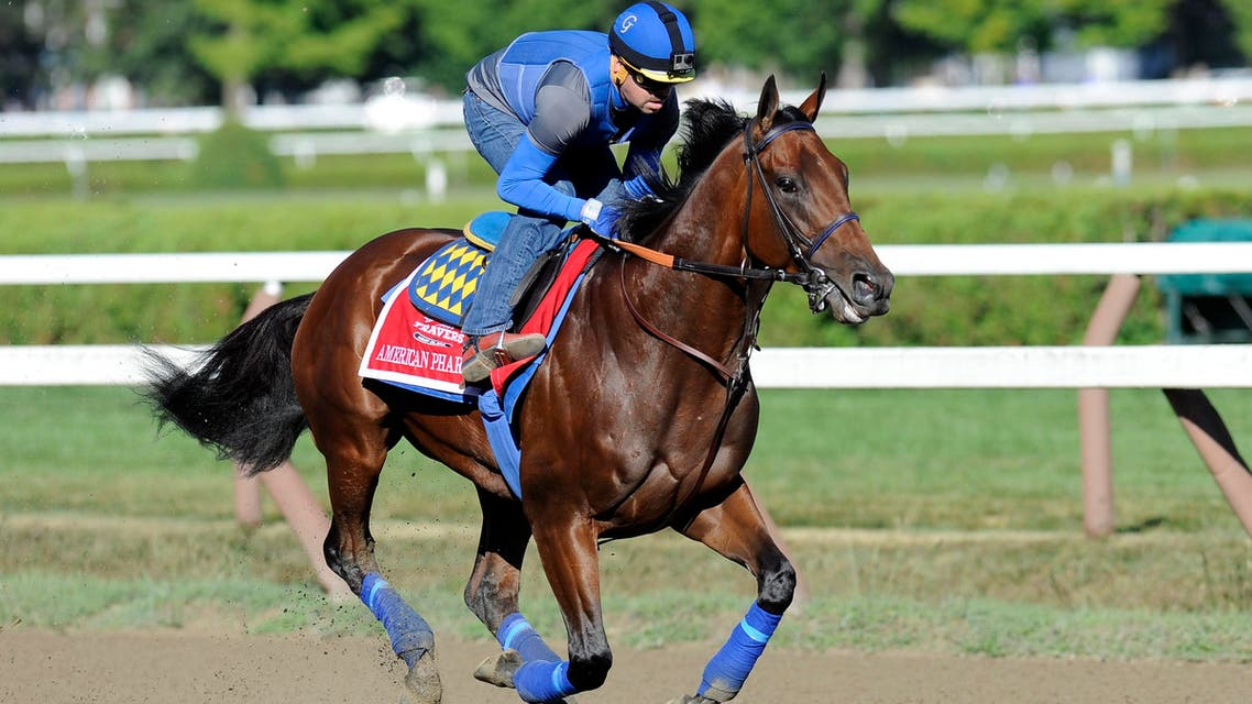 Triple Crown winner American Pharoah, with exercise rider George Alvarez up, works out at Saratoga Race Course on Friday, Aug. 28, 2015