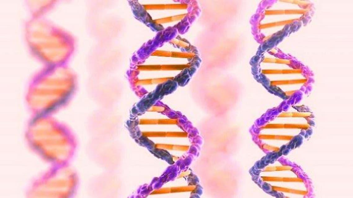 تعطيل جينات الشيخوخة عن نشاطها يعيد الشباب ويطيل العمر