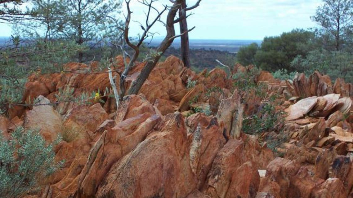 his photo provided by the Proceedings of the National Academy of Sciences (PNAS), taken in 2005, shows fossil-like rock found in Australia containing hints of life from 4.1 billion years ago. (AP)