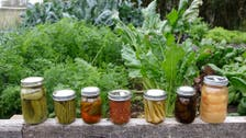 Better for your health and pocket: Nature's probiotic