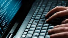 Egyptian govt websites briefly hacked: official
