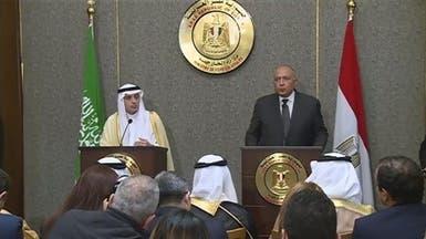 تطابق الموقفين السعودي والمصري حول سوريا