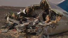 مصر: هذه حقيقة مشاركة أميركا في تحقيقات طائرة روسيا