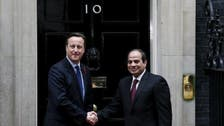 Sisi: Egypt 'ready to cooperate' to ensure tourists' security