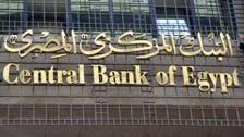 المركزي المصري ضخ 8.3 مليار دولار للمستوردين بـ45 يوماً