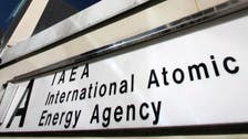 UN nuclear watchdog has four candidates to take top job