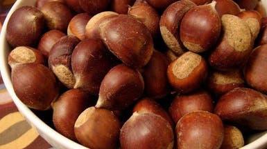 """""""أبو فروة"""" فاكهة شتوية رئيسية في الرحلات البرية"""