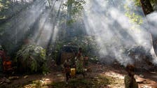 At climate talks, African nations pledge to restore forests