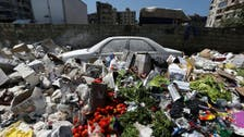 Lebanon cabinet agrees to export country's waste