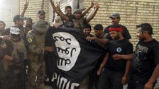 Eight ISIS commanders killed in air strikes: Iraqi state TV