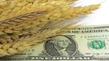 مع ارتفاع تكلفة الشحن 537%.. هل يواجه العالم أزمة غذاء؟