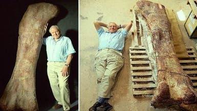ديناصور كان عملاق الأرض الأضخم بقلب وزنه 220 كلغ