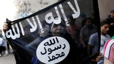 Dutch spy services unravel 'myth' of life with ISIS