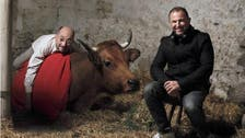 """""""البقرة"""" يحصد جوائز مهرجان الفيلم الكوميدي في فرنسا"""