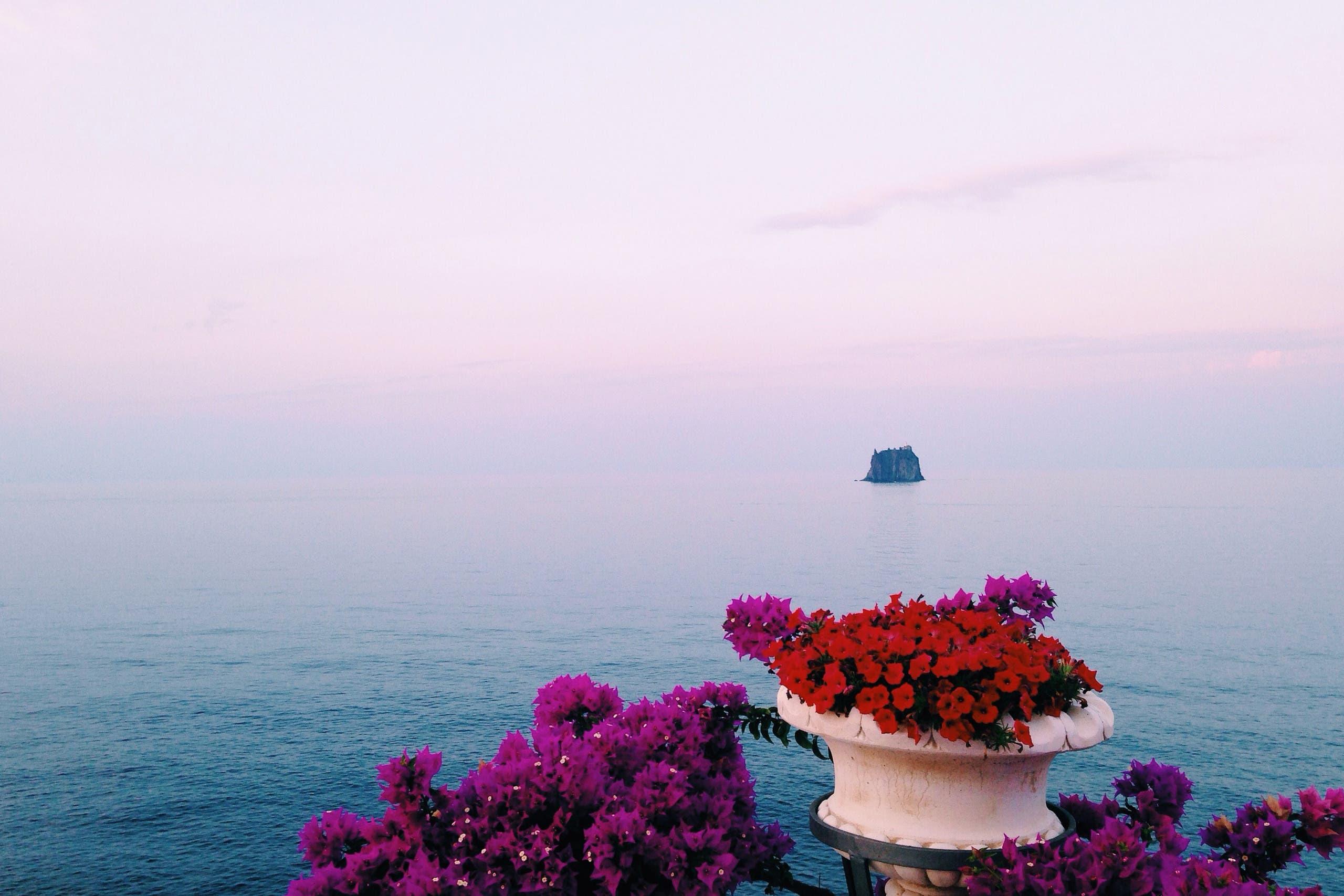Flowery view from Villagio Stromboli. (Yorva Tsiakara)
