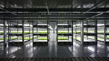 World's first 'robot run' farm to open in Japan