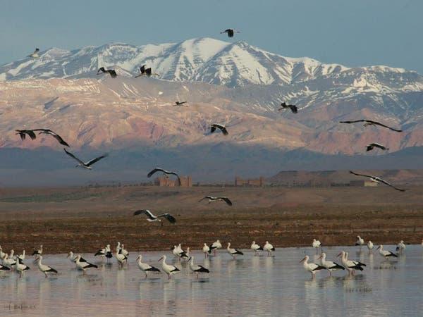 المغرب يحارب للمحافظة على المناطق الرطبة جغرافياً