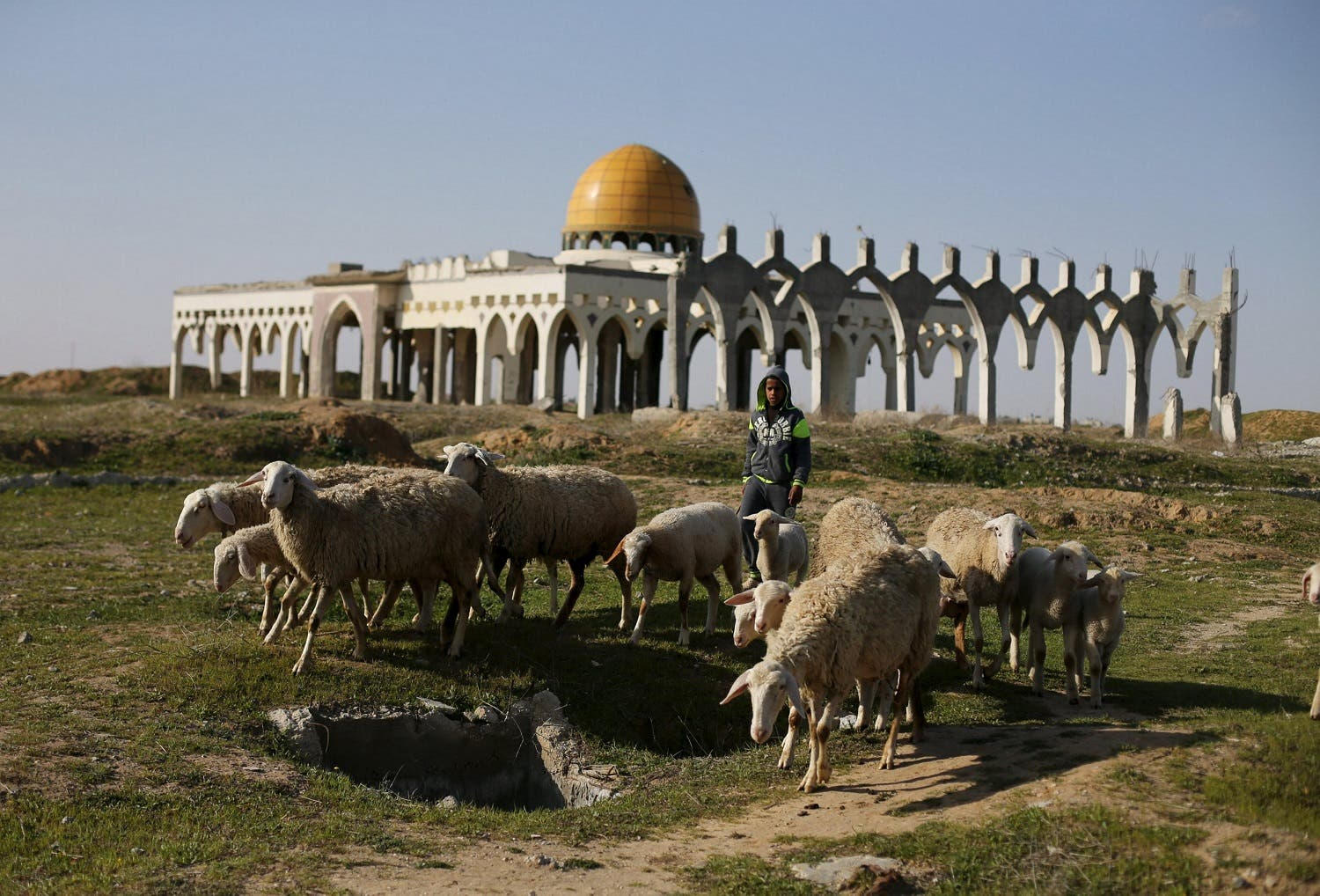 Palestinian boy herds sheep in front of the ruins of Yasser Arafat International Airport, which was bombed by Israel in the past, in Rafah in the southern Gaza Strip. (Reuters)