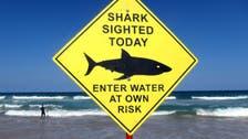 Record 98 shark attacks worldwide in 2015