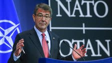 U.S. sees Saudi Arabia and UAE providing commandos for Syria