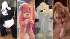 Cuddly craze: Twitter overrun by giant dancing teddy bears