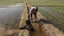 Better water management could halve global food deficit