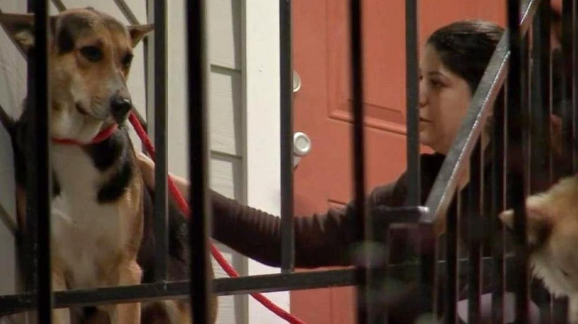 A German Shepherd waited weeks for his owner to return after he was murdered in a Houston convenience store on Feb. 7. (Picture courtesy KTRK)