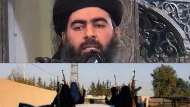 من هي الداعشية السعودية التي التقاها خليفة داعش؟