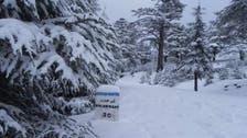 بالصور.. إزالة الثلوج من 3780 كيلومترا من الطرق بالمغرب