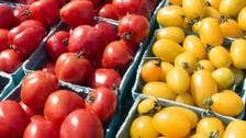 Cheaper healthy food could save millions of lives