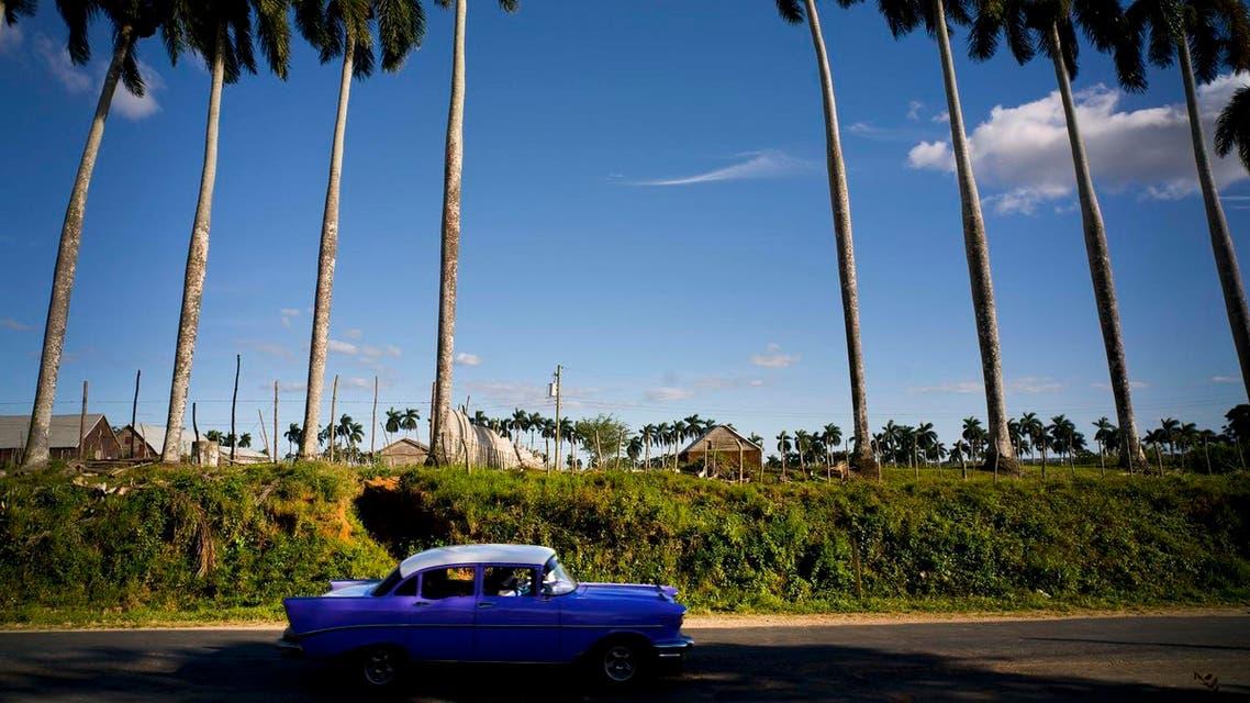 In this Feb. 26, 2016 photo, a classic American car passes the Francisco Blanco tobacco farm in the province of Pinar del Rio, Cuba. AP