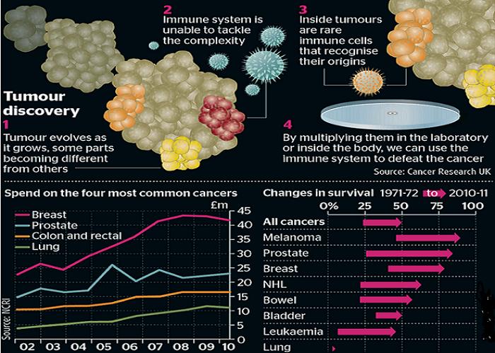 غرافيك لبعض أنواع السرطان وطرق معالجتها بناء على الطرق الجديدة