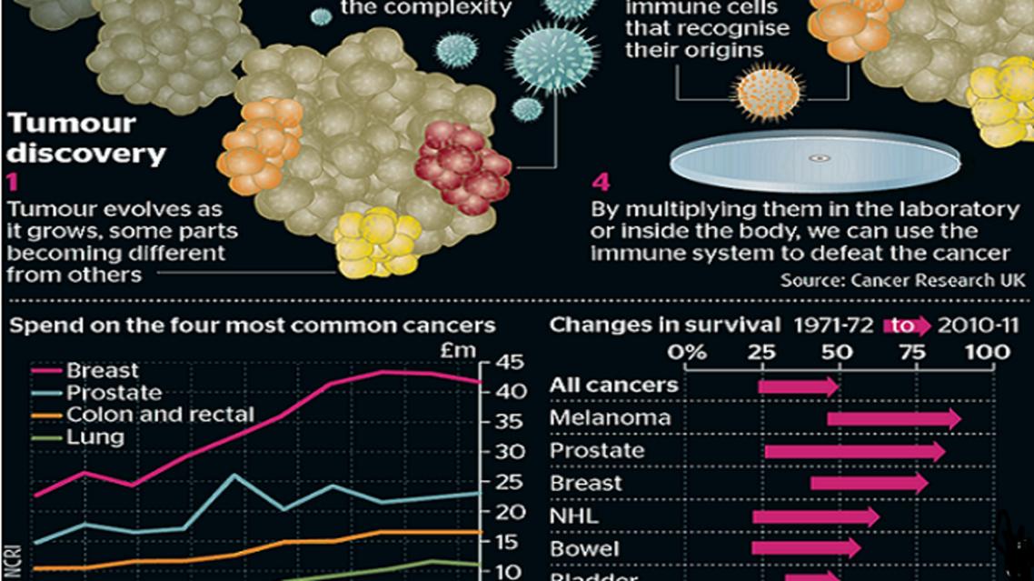 """""""غرافيك لبعض أنواع السرطان وطرق معالجتها بناء على الطرق الجديدة"""" """"العلماء البريطانيون بحثوا في 4 أنواع من سرطان الرئة، ظهرت بعد المسح بالأشعة"""""""