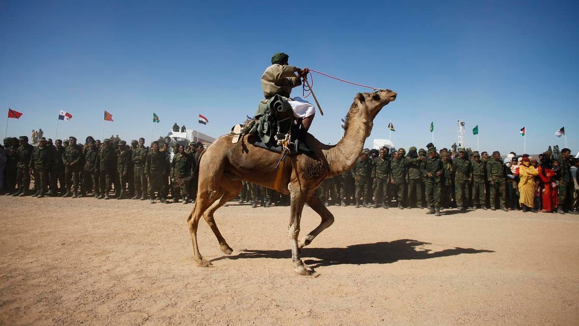 A Sahrawi man rides a camel at the 35th anniversary celebrations of their independence movement for Western Sahara from Morocco. (File photo: Reuters)