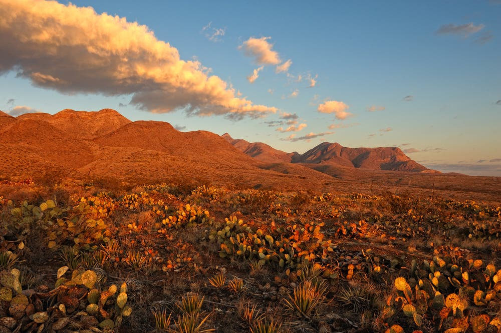 Southern Rocky Mountains in El Paso, Texas at Sunrise. (Shutterstock)