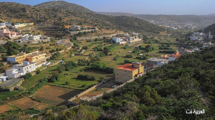 قرية آل رحمة تكتسي الأخضر