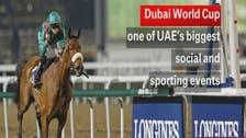 Dubai sees horse racing's richest night begin