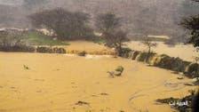 بالصور.. أمطار سدوان جنوب السعودية