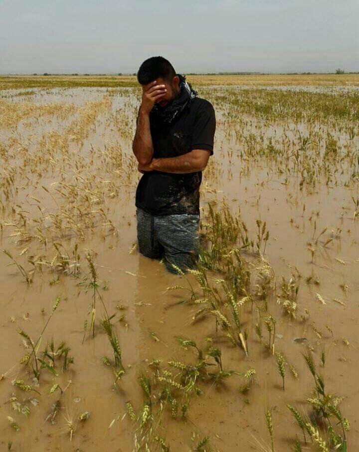 مزارع عربي يبكي لفقدان محصوله بالفيضانات