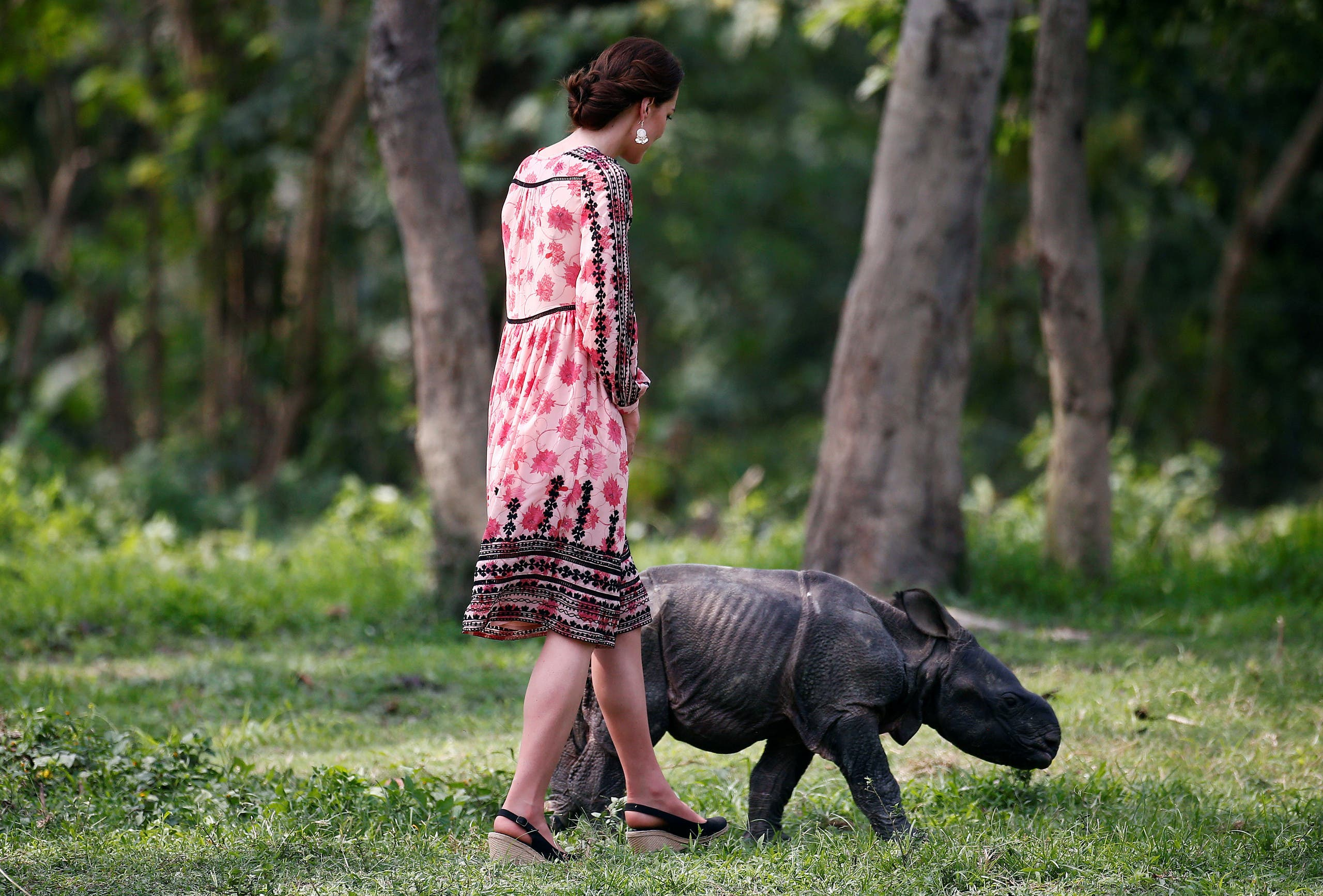 Prince William and Kate at India wildlife center