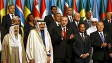 Islamic summit slams Hezbollah for 'terrorism'