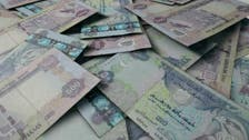 UAE central bank survey shows rebound in credit demand
