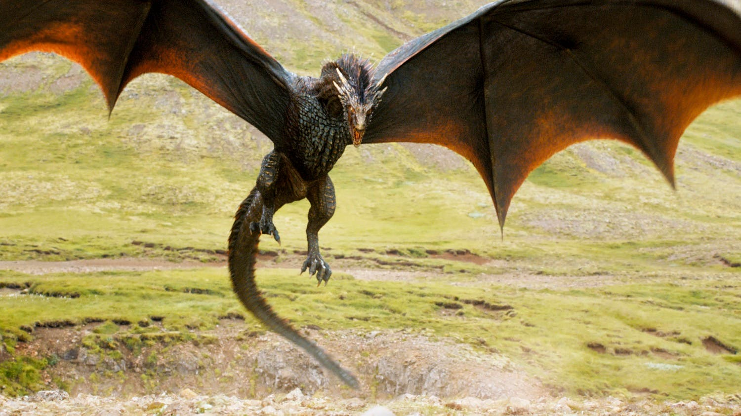 Dragons (Photo coursety: Game of Thrones)